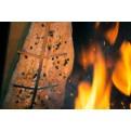 Lachs am knisternden Feuer bei der Zubereitung