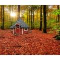 Rote Grillkota 9 m² im Herbstambiente